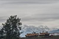 Il conflitto turchi-curdi e la Nato
