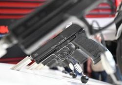 Dell'Osso: «Troppe richieste di porto d'armi»