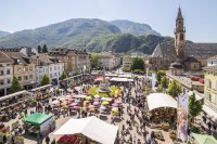 Se Bolzano diventa un paradiso fiscale